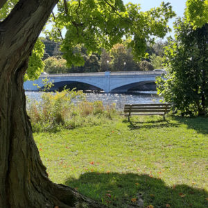 photo of a bench in a park, overlooking a river with a bridge crossing it